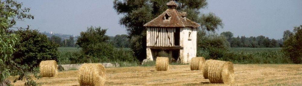 Guellec-Digby